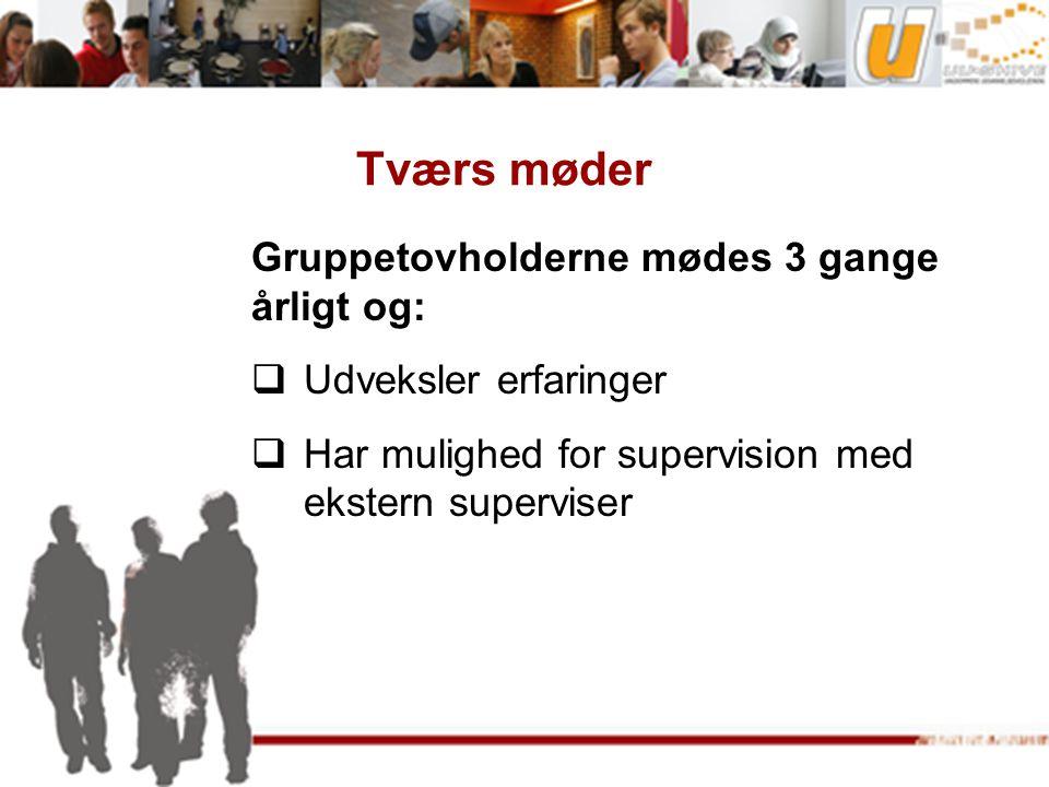 Tværs møder Gruppetovholderne mødes 3 gange årligt og:  Udveksler erfaringer  Har mulighed for supervision med ekstern superviser