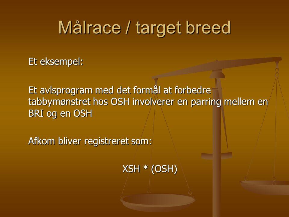 Målrace / target breed Et eksempel: Et avlsprogram med det formål at forbedre tabbymønstret hos OSH involverer en parring mellem en BRI og en OSH Afkom bliver registreret som: XSH * (OSH)