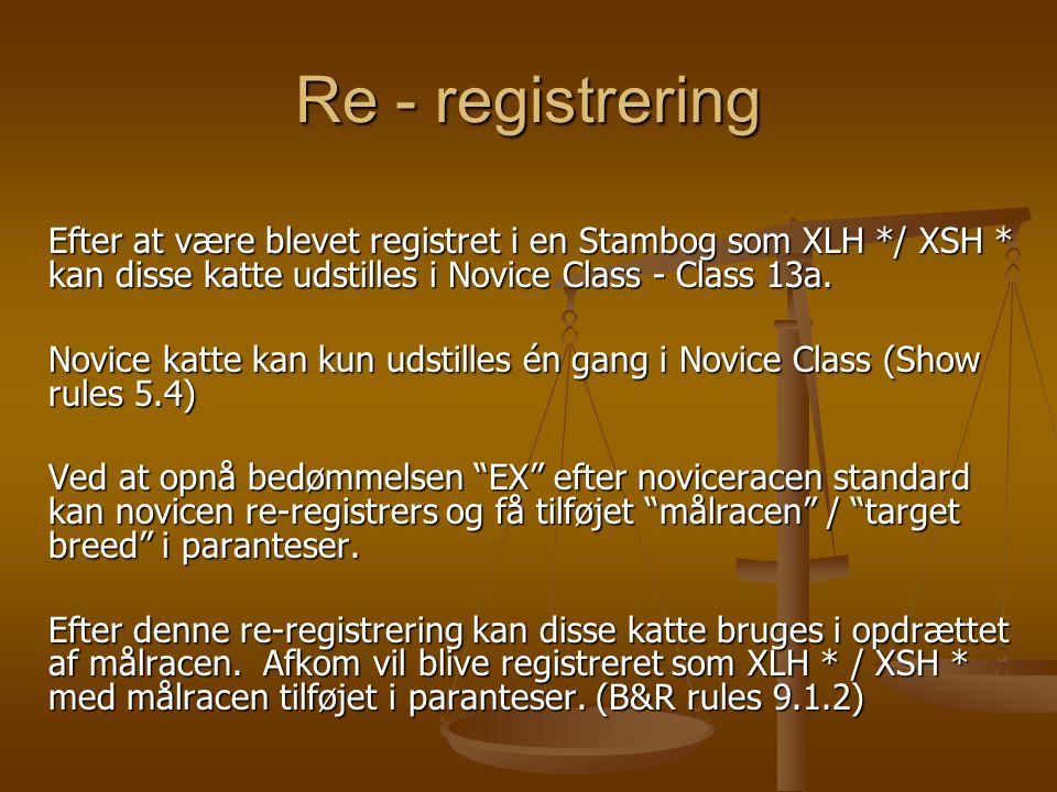 Re - registrering Efter at være blevet registret i en Stambog som XLH */ XSH * kan disse katte udstilles i Novice Class - Class 13a.