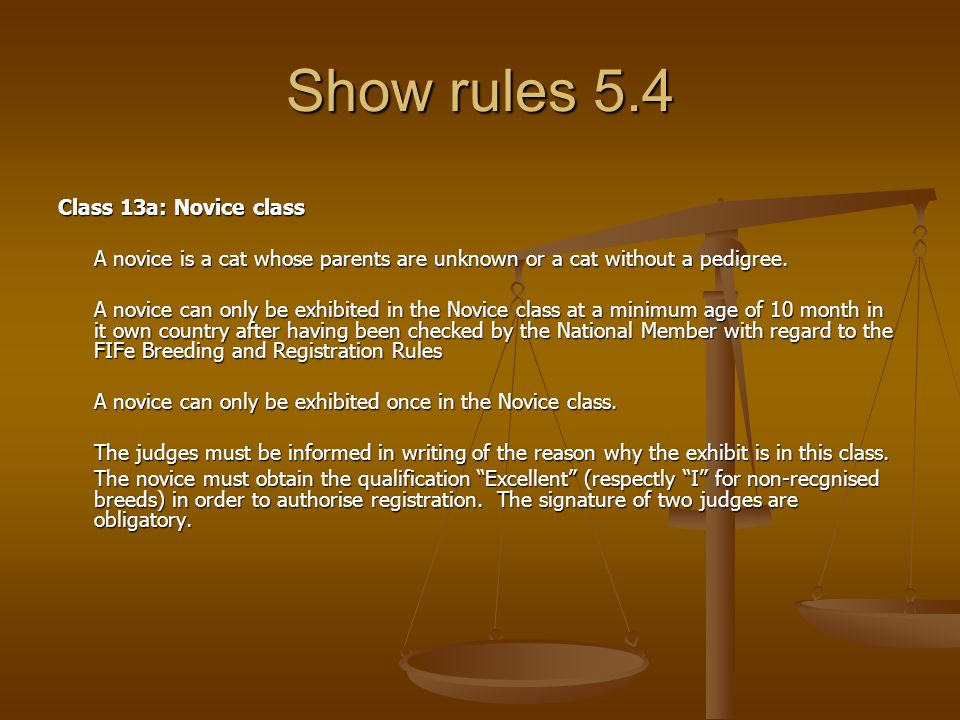 Show rules 5.4 Class 13a: Novice class A novice is a cat whose parents are unknown or a cat without a pedigree.
