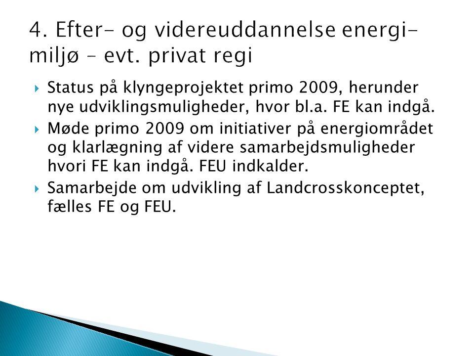  Status på klyngeprojektet primo 2009, herunder nye udviklingsmuligheder, hvor bl.a.
