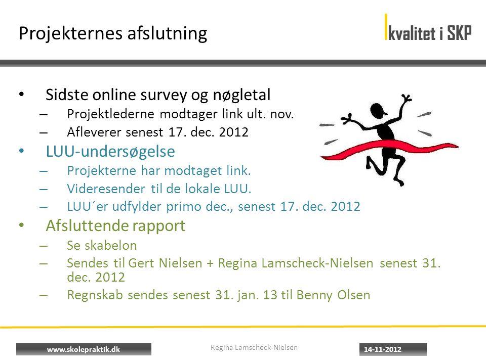 www.skolepraktik.dk Projekternes afslutning • Sidste online survey og nøgletal – Projektlederne modtager link ult.