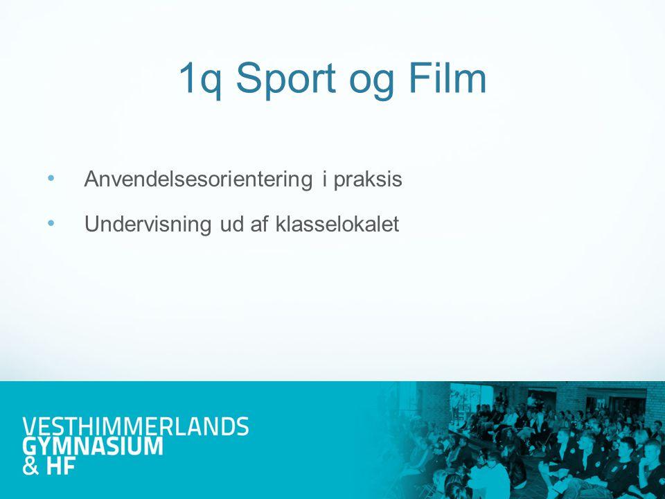 Et døgn med dansk fodbold Foreningsidræt og integration i Danmark