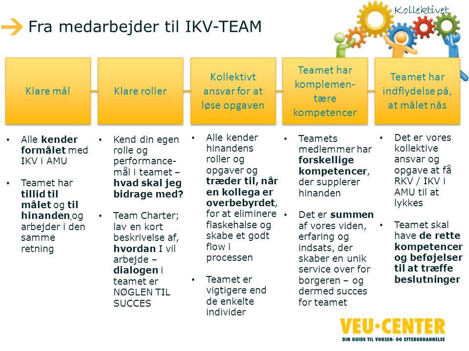 Fra medarbejder til IKV-TEAM Klare mål Klare roller Kollektivt ansvar for at løse opgaven Teamet har komplemen- tære kompetencer Teamet har indflydelse på, at målet nås • Alle kender formålet med IKV i AMU • Teamet har tillid til målet og til hinanden og arbejder i den samme retning • Kend din egen rolle og performance- mål i teamet – hvad skal jeg bidrage med.