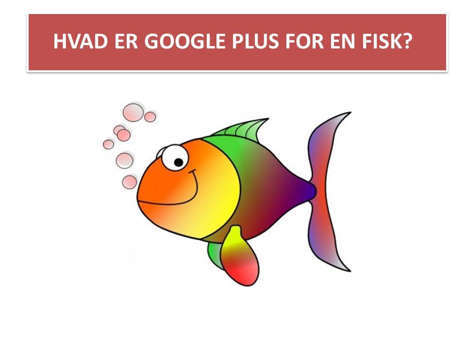 HVAD ER GOOGLE PLUS FOR EN FISK