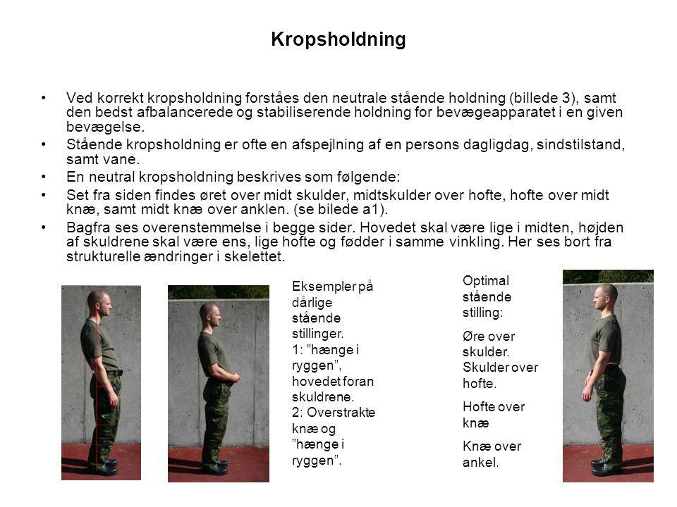 Kropsholdning •Ved korrekt kropsholdning forståes den neutrale stående holdning (billede 3), samt den bedst afbalancerede og stabiliserende holdning for bevægeapparatet i en given bevægelse.