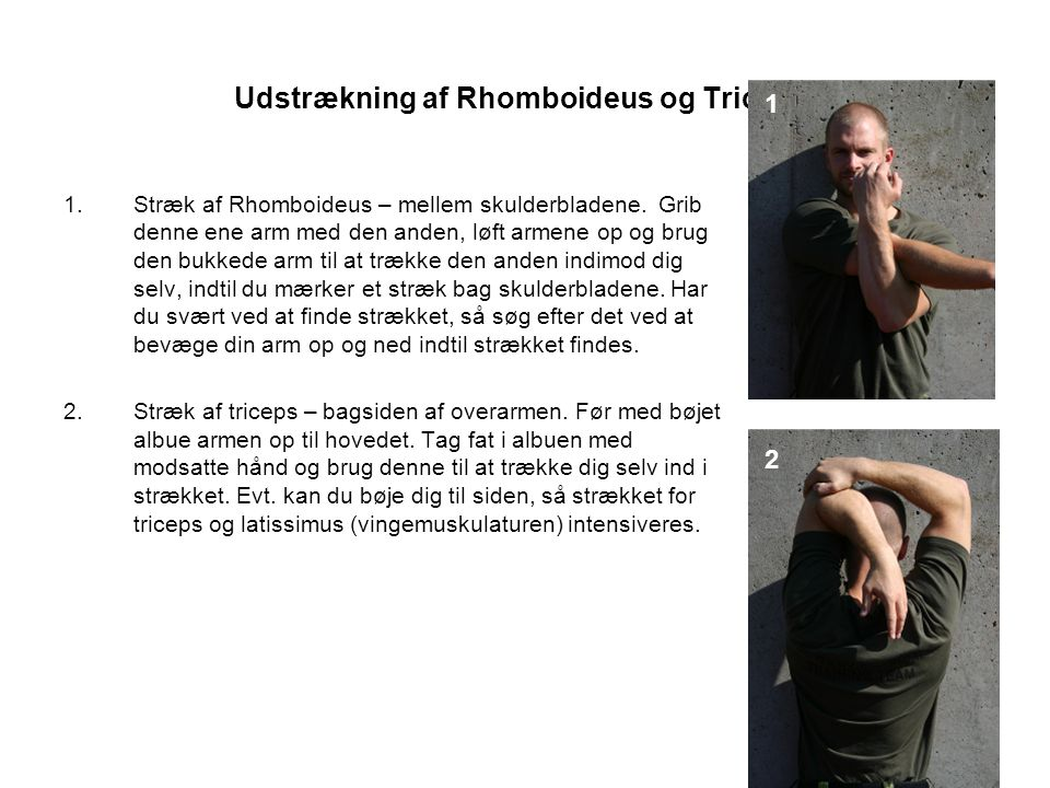 Udstrækning af Rhomboideus og Triceps.1.Stræk af Rhomboideus – mellem skulderbladene.