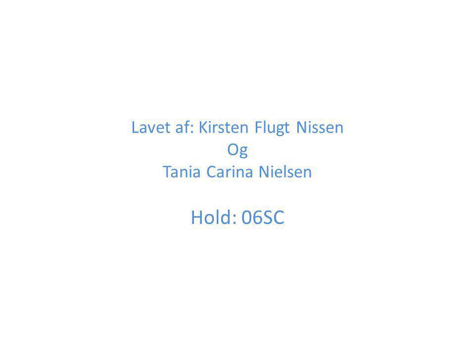 Lavet af: Kirsten Flugt Nissen Og Tania Carina Nielsen Hold: 06SC