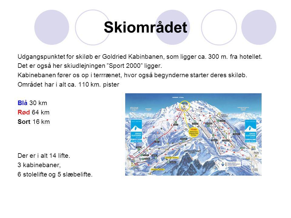 Skiområdet Udgangspunktet for skiløb er Goldried Kabinbanen, som ligger ca.