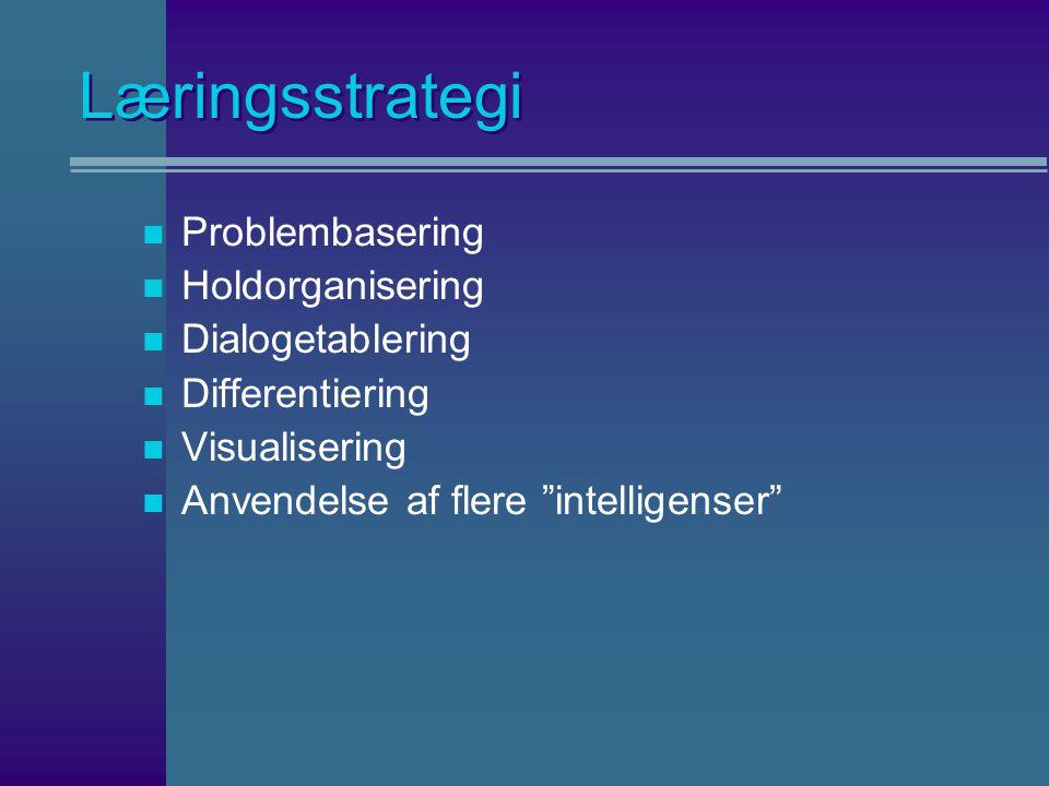 Læringsstrategi n Problembasering n Holdorganisering n Dialogetablering n Differentiering n Visualisering n Anvendelse af flere intelligenser