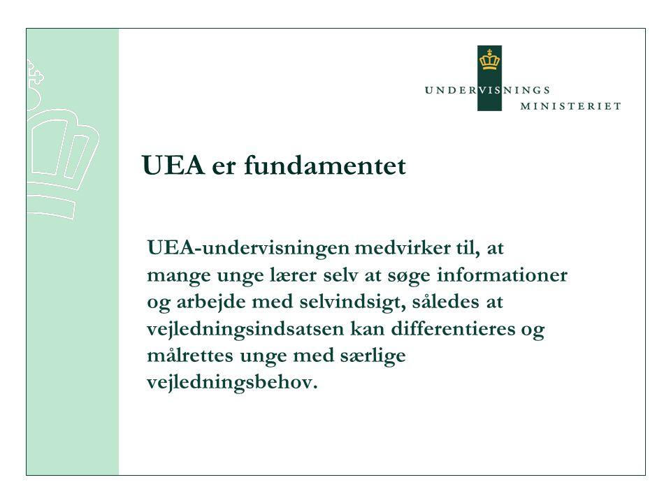 UEA-undervisningen medvirker til, at mange unge lærer selv at søge informationer og arbejde med selvindsigt, således at vejledningsindsatsen kan differentieres og målrettes unge med særlige vejledningsbehov.