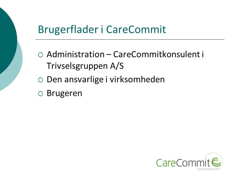 Brugerflader i CareCommit  Administration – CareCommitkonsulent i Trivselsgruppen A/S  Den ansvarlige i virksomheden  Brugeren