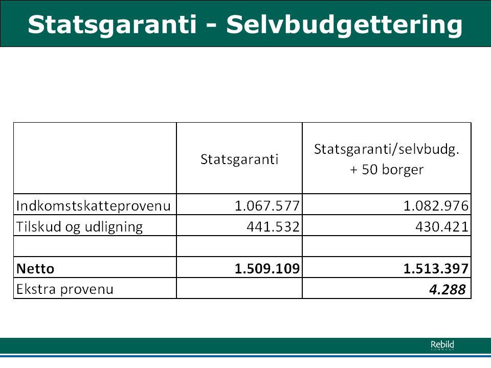 Statsgaranti - Selvbudgettering