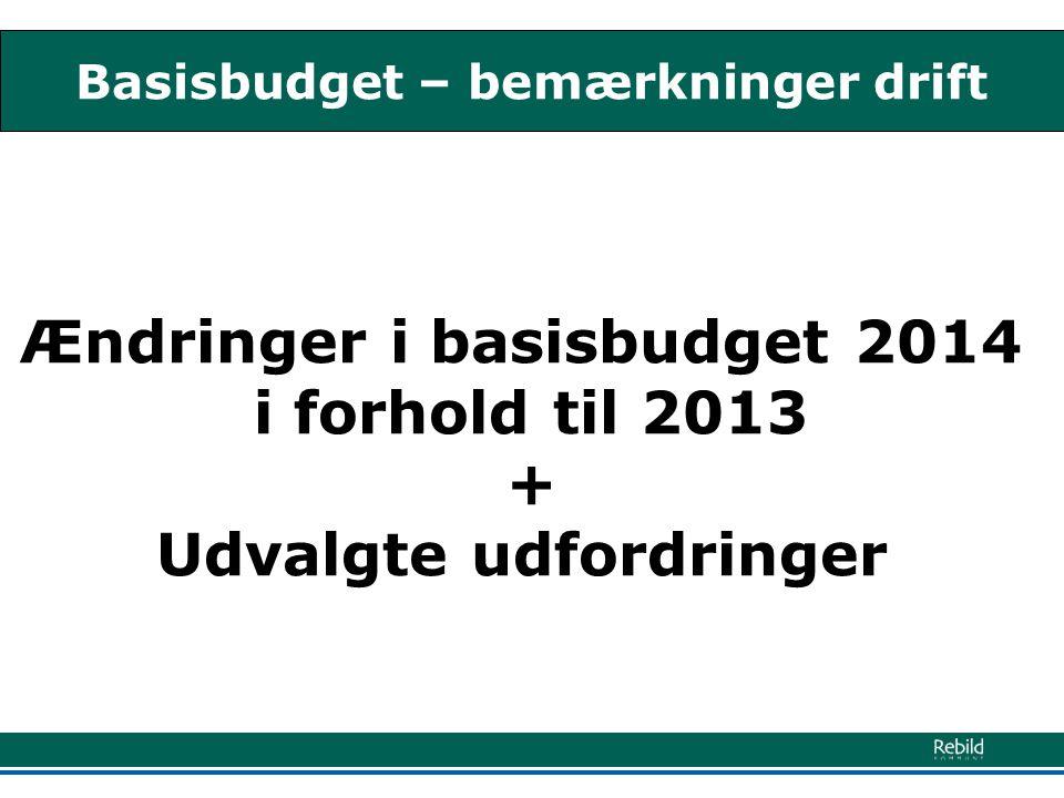 Basisbudget – bemærkninger drift Ændringer i basisbudget 2014 i forhold til 2013 + Udvalgte udfordringer