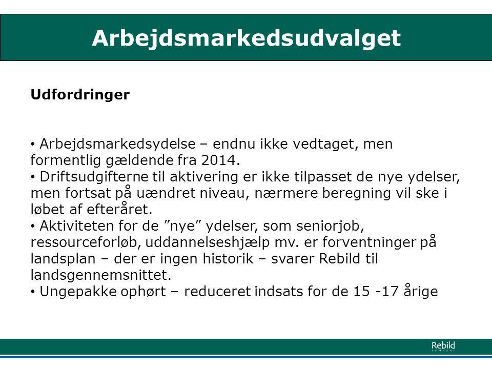 Arbejdsmarkedsudvalget Udfordringer • Arbejdsmarkedsydelse – endnu ikke vedtaget, men formentlig gældende fra 2014.