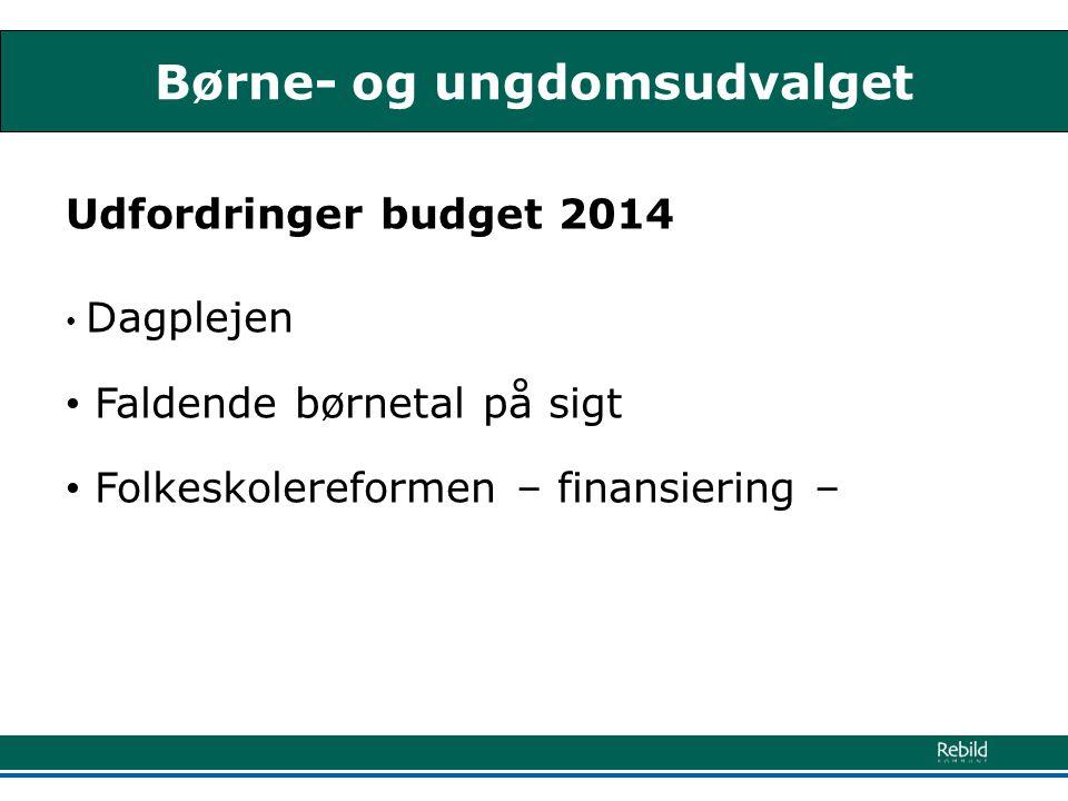 Børne- og ungdomsudvalget Udfordringer budget 2014 • Dagplejen • Faldende børnetal på sigt • Folkeskolereformen – finansiering –