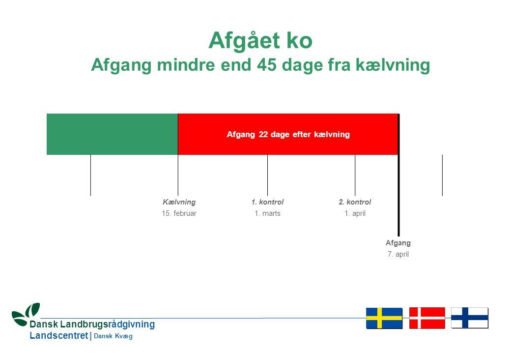 10 Dansk Landbrugsrådgivning Landscentret | Dansk Kvæg Afgået ko Afgang mindre end 45 dage fra kælvning Afgang 22 dage efter kælvning Kælvning 15.
