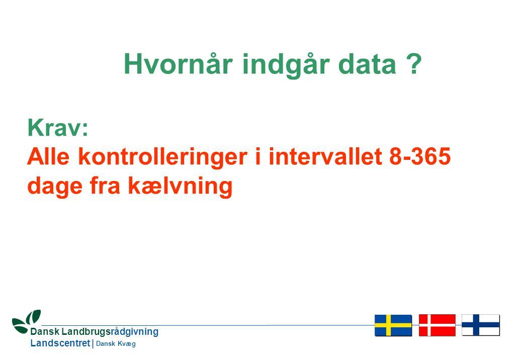 13 Dansk Landbrugsrådgivning Landscentret | Dansk Kvæg Hvornår indgår data .