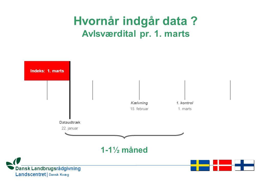 14 Dansk Landbrugsrådgivning Landscentret | Dansk Kvæg Hvornår indgår data .