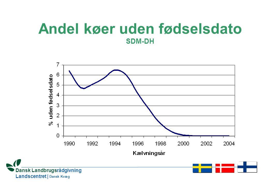 7 Dansk Landbrugsrådgivning Landscentret | Dansk Kvæg Andel køer uden fødselsdato SDM-DH