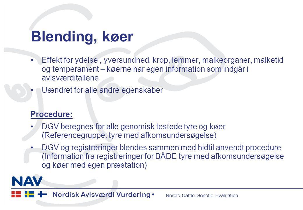 Nordisk Avlsværdi Vurdering • Nordic Cattle Genetic Evaluation Nordisk Avlsværdi Vurdering • Nordic Cattle Genetic Evaluation 5 Blending, køer •Effekt for ydelse, yversundhed, krop, lemmer, malkeorganer, malketid og temperament – køerne har egen information som indgår i avlsværditallene •Uændret for alle andre egenskaber Procedure: •DGV beregnes for alle genomisk testede tyre og køer (Referencegruppe: tyre med afkomsundersøgelse) •DGV og registreringer blendes sammen med hidtil anvendt procedure (Information fra registreringer for BÅDE tyre med afkomsundersøgelse og køer med egen præstation)