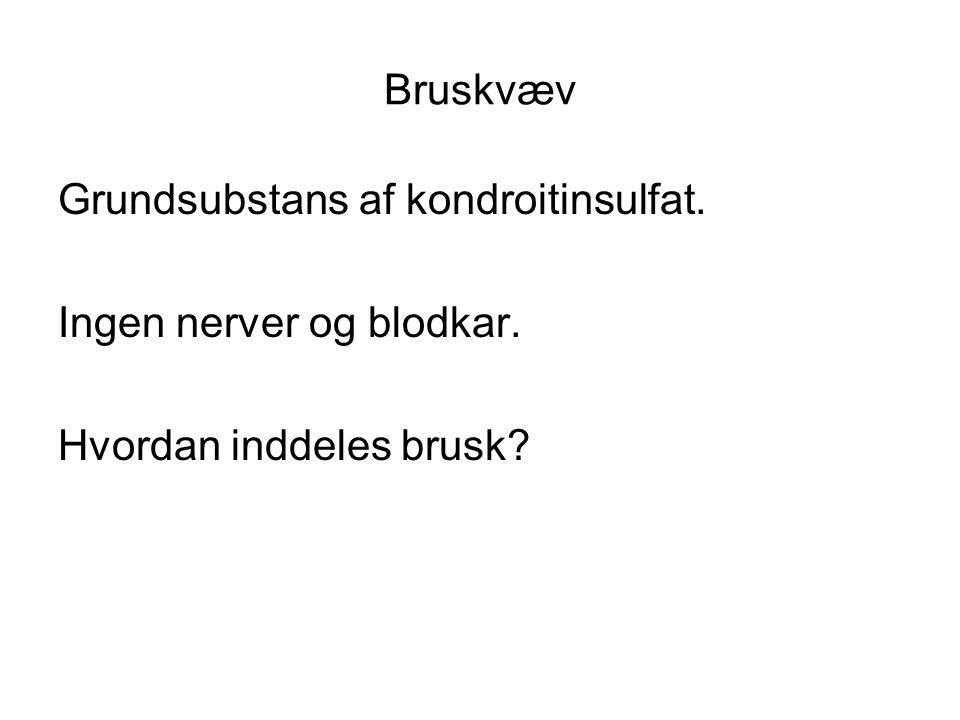 Bruskvæv Grundsubstans af kondroitinsulfat. Ingen nerver og blodkar. Hvordan inddeles brusk?