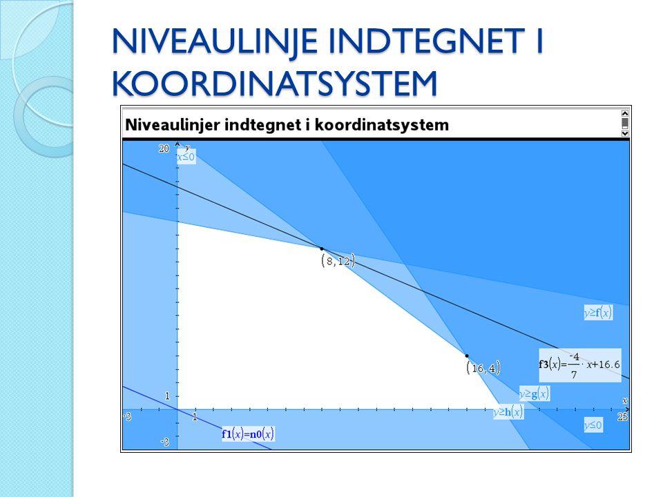 NIVEAULINJE INDTEGNET I KOORDINATSYSTEM