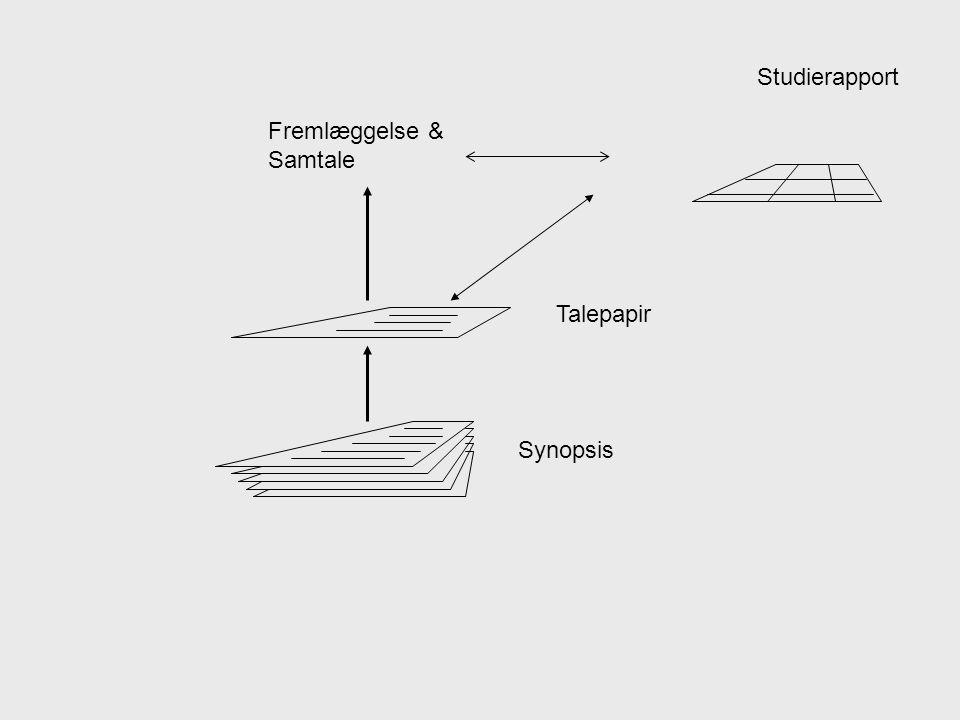 Synopsis Talepapir Fremlæggelse & Samtale Studierapport