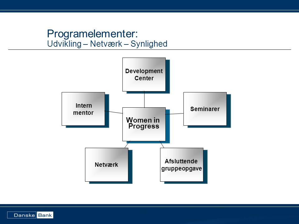 Programelementer: Udvikling – Netværk – Synlighed