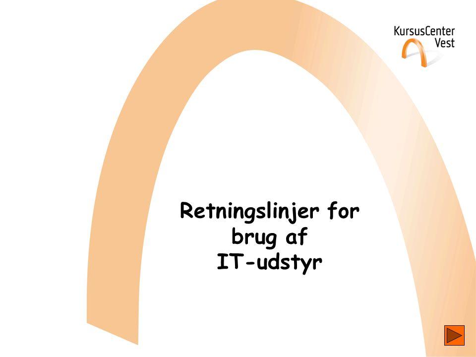 Retningslinjer for brug af IT-udstyr
