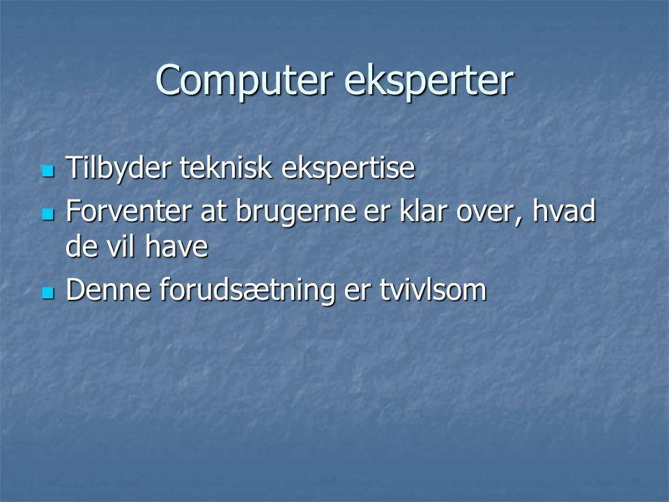 Computer eksperter  Tilbyder teknisk ekspertise  Forventer at brugerne er klar over, hvad de vil have  Denne forudsætning er tvivlsom