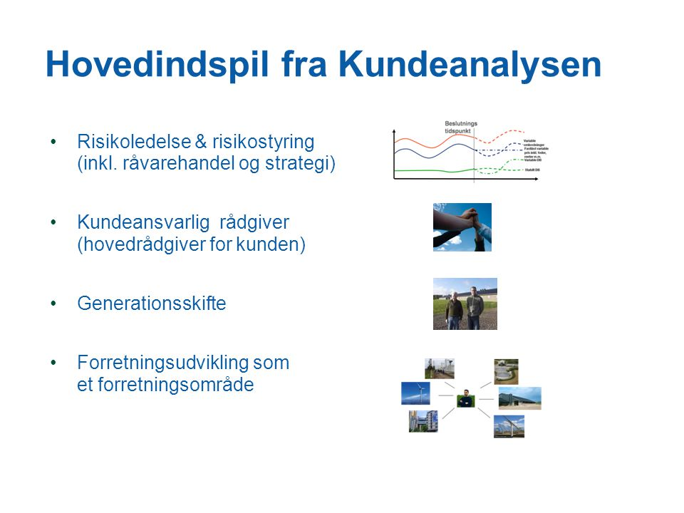 Hovedindspil fra Kundeanalysen •Risikoledelse & risikostyring (inkl.
