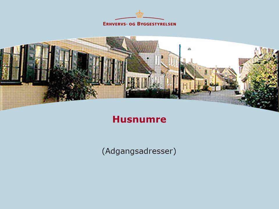 Husnumre (Adgangsadresser)