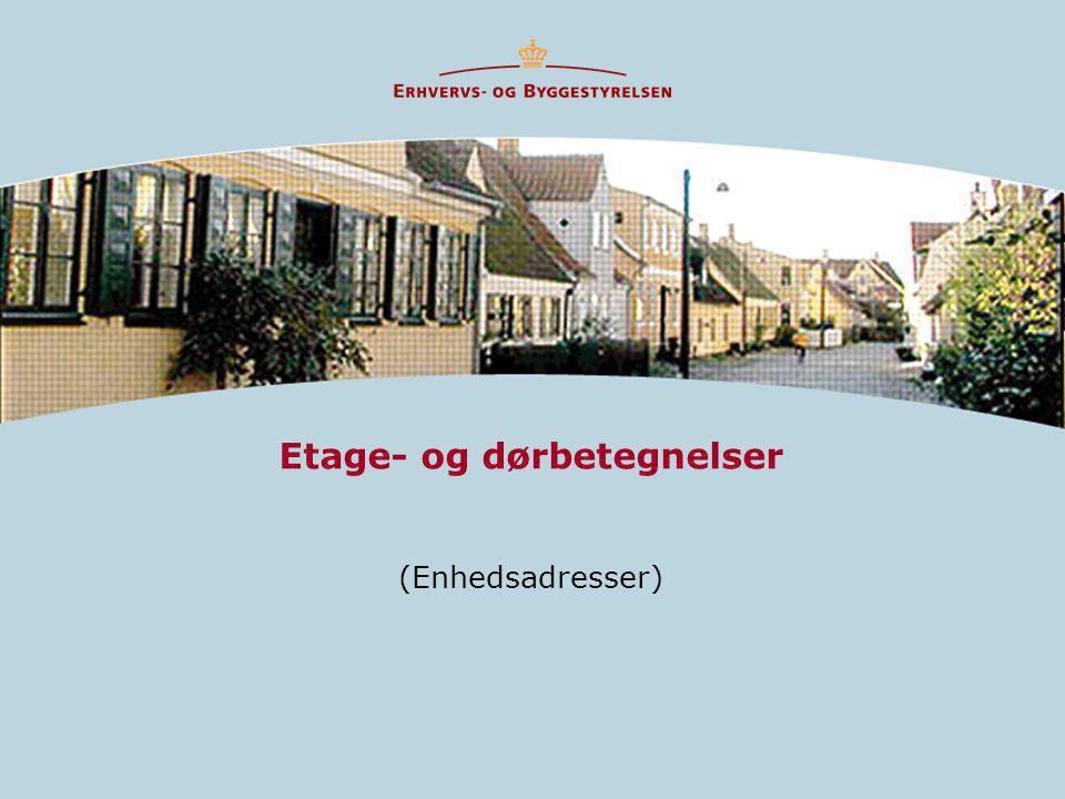 Etage- og dørbetegnelser (Enhedsadresser)