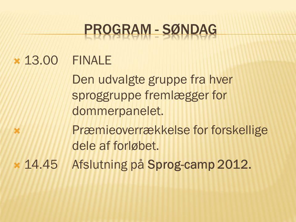  13.00FINALE Den udvalgte gruppe fra hver sproggruppe fremlægger for dommerpanelet.