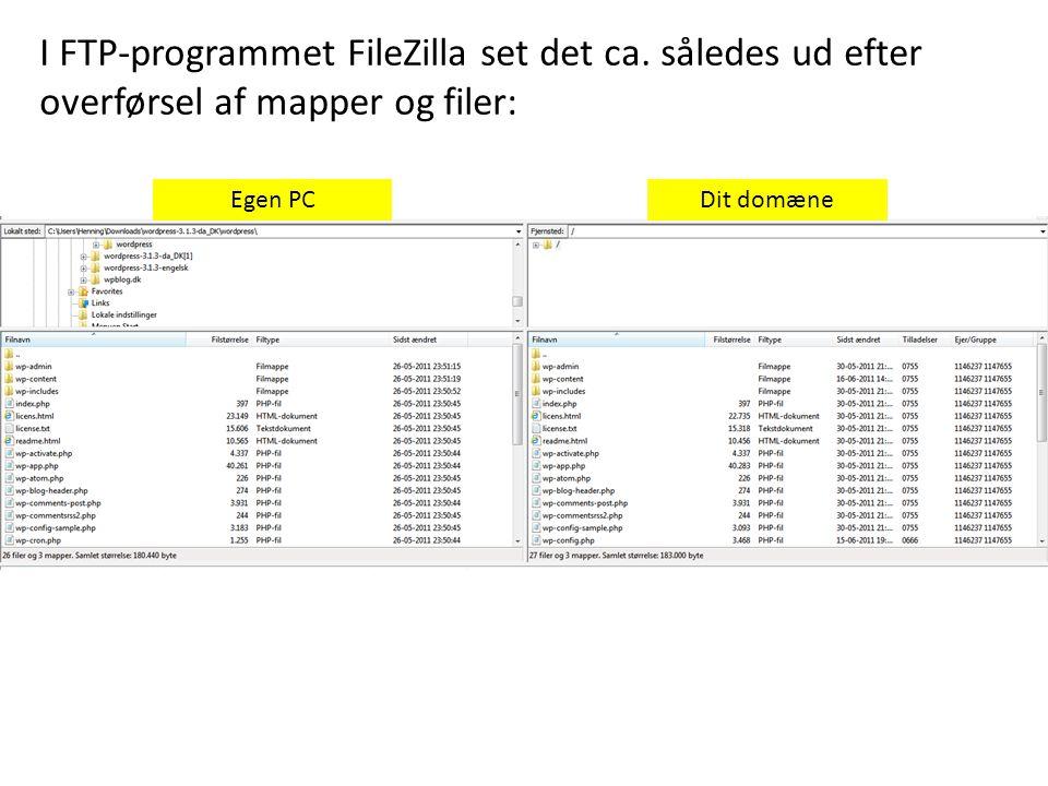 Egen PCDit domæne I FTP-programmet FileZilla set det ca.