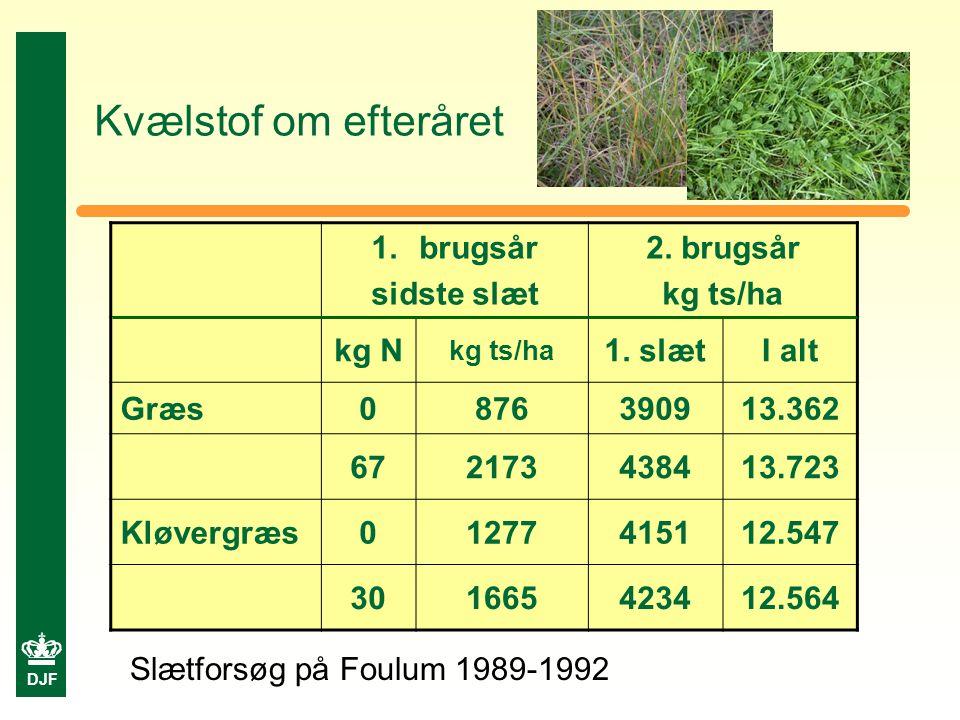 DJF Kvælstof om efteråret 1.brugsår sidste slæt 2.