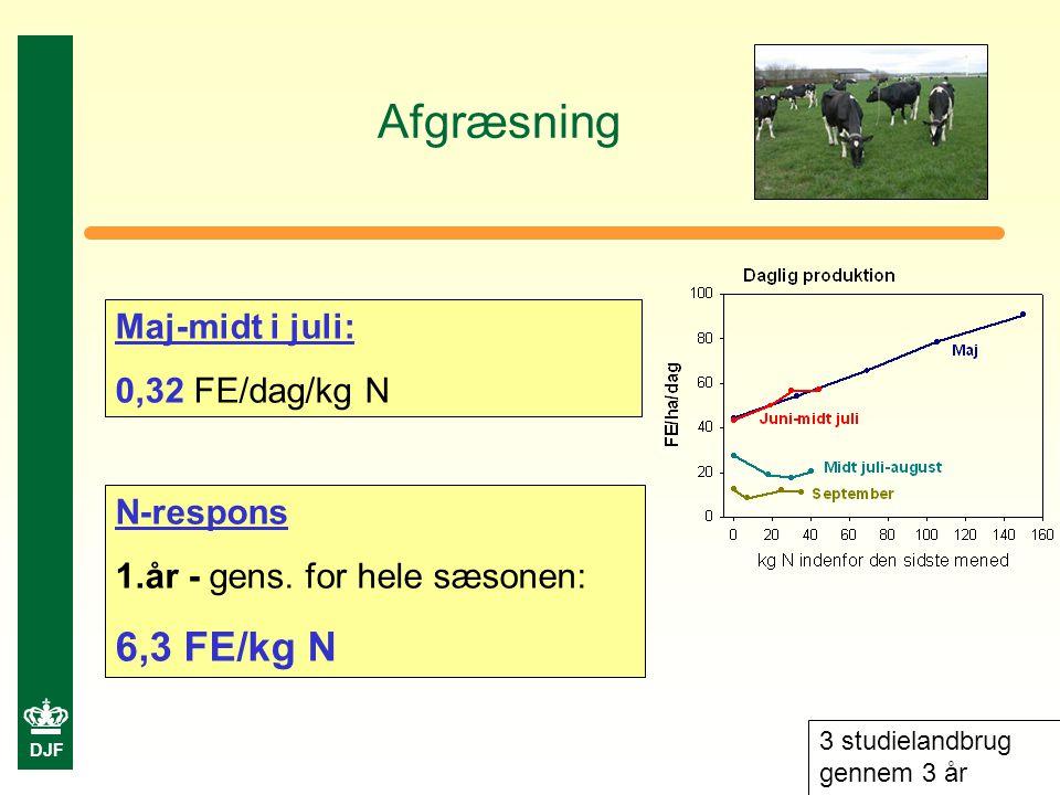DJF Afgræsning Maj-midt i juli: 0,32 FE/dag/kg N N-respons 1.år - gens.