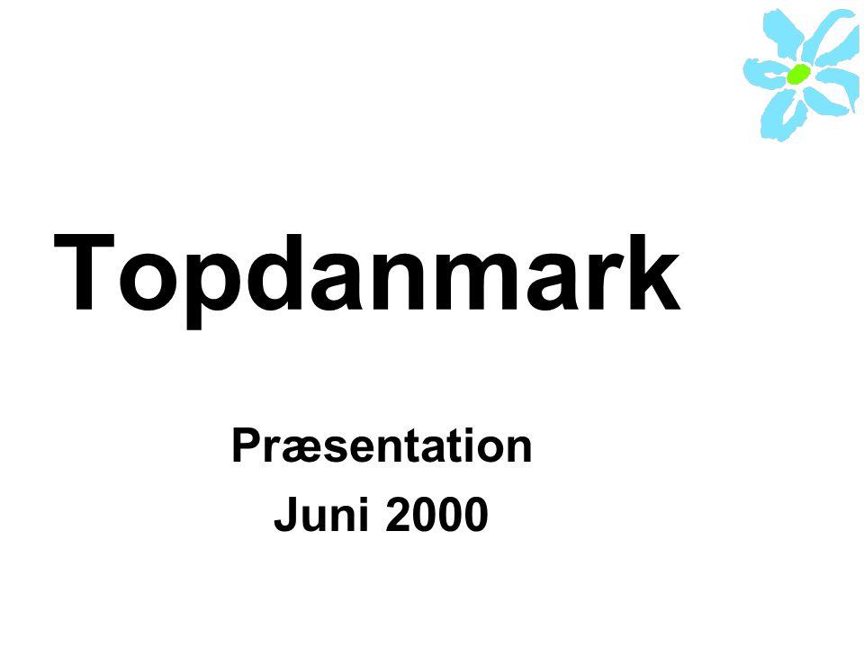 Topdanmark Præsentation Juni 2000
