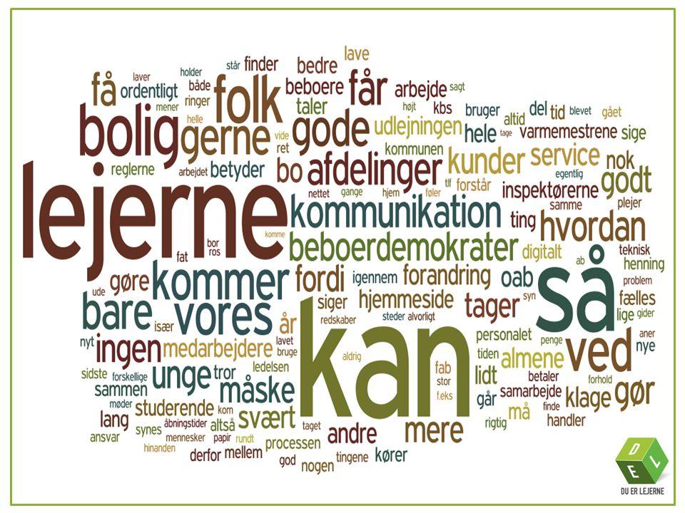 KORT OM DEL •DEL-projektet står for Du Er Lejerne-projektet, hvor vi i fællesskab skaber et nyt image for de almene boligorganisationer i Odense.