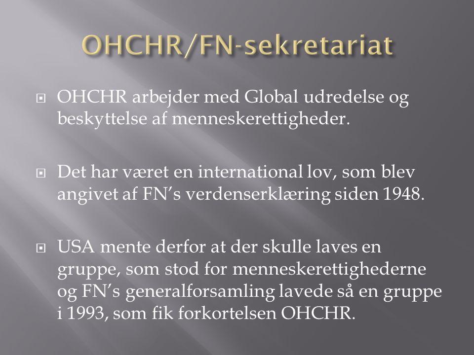  OHCHR arbejder med Global udredelse og beskyttelse af menneskerettigheder.
