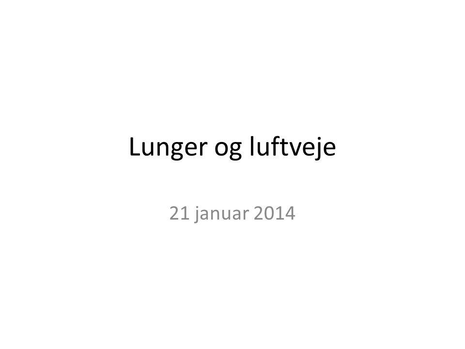 Lunger og luftveje 21 januar 2014
