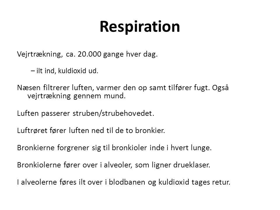 Respiration Vejrtrækning, ca. 20.000 gange hver dag. – ilt ind, kuldioxid ud. Næsen filtrerer luften, varmer den op samt tilfører fugt. Også vejrtrækn