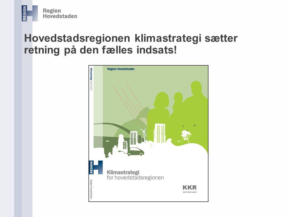Hovedstadsregionen klimastrategi sætter retning på den fælles indsats!
