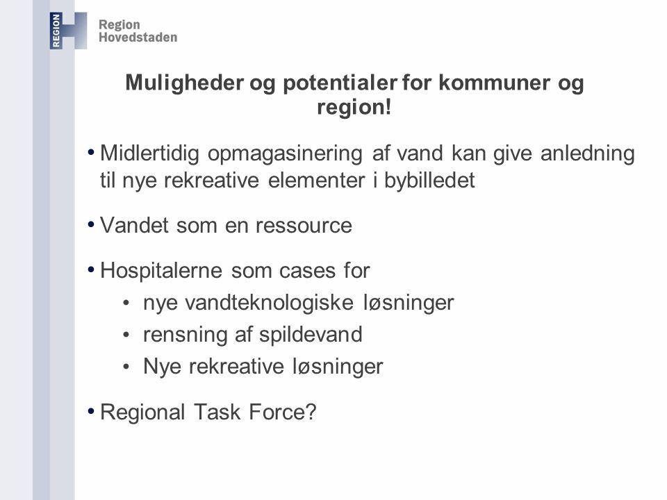 Muligheder og potentialer for kommuner og region.