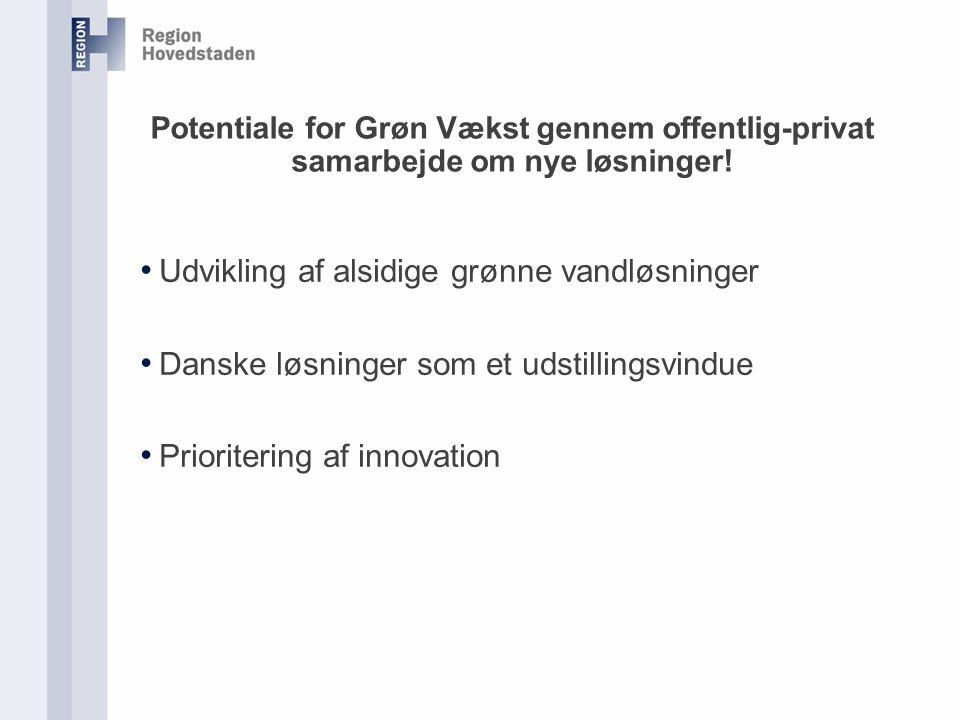 Potentiale for Grøn Vækst gennem offentlig-privat samarbejde om nye løsninger.