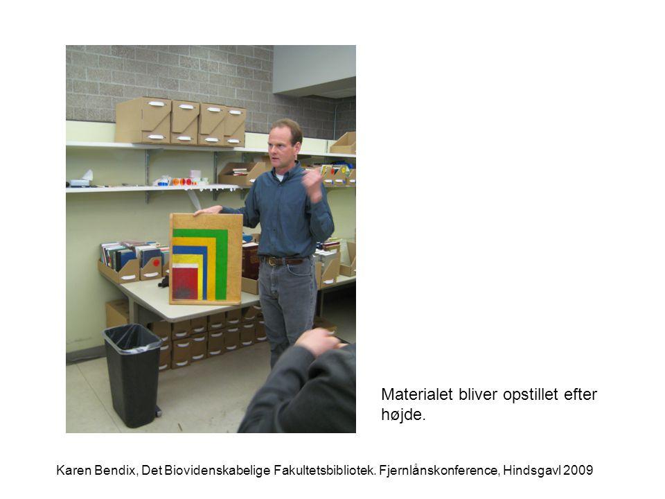 Materialet bliver opstillet efter højde. Karen Bendix, Det Biovidenskabelige Fakultetsbibliotek.