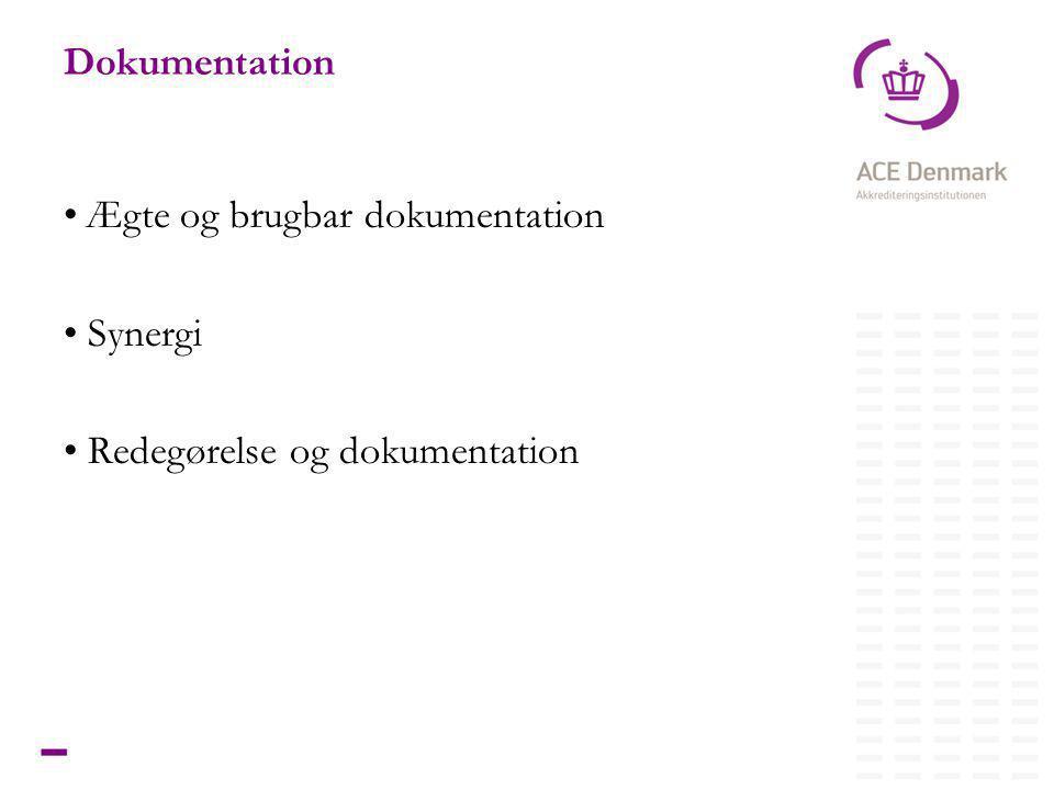 10Titel lorem ipsum dolor sit amet Dokumentation • Ægte og brugbar dokumentation • Synergi • Redegørelse og dokumentation