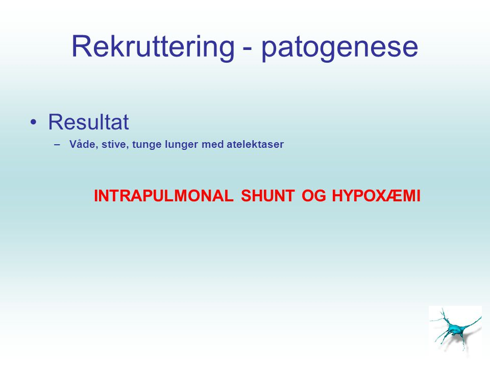 Rekruttering - patogenese •Resultat –Våde, stive, tunge lunger med atelektaser INTRAPULMONAL SHUNT OG HYPOXÆMI