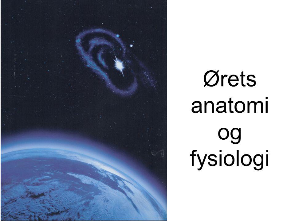 Lad os snakke om...•Lyd •Ørets anatomi - dvs. hvordan ser det ud •og fysiologi - dvs.